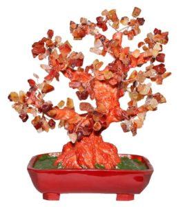 Целительные свойства сердолика известны с древних времен. Сердоликовое дерево
