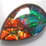 Камень Аммолит (аммониты) и магические свойства минерала